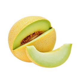 Melon Galia ECO