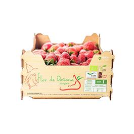 Freson caja 2 kg