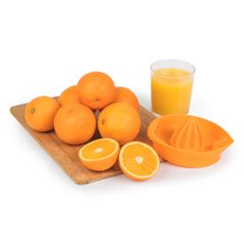Taronja suc 600g ECO