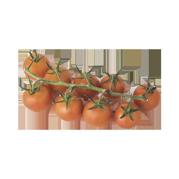Tomate cherry rama ECO