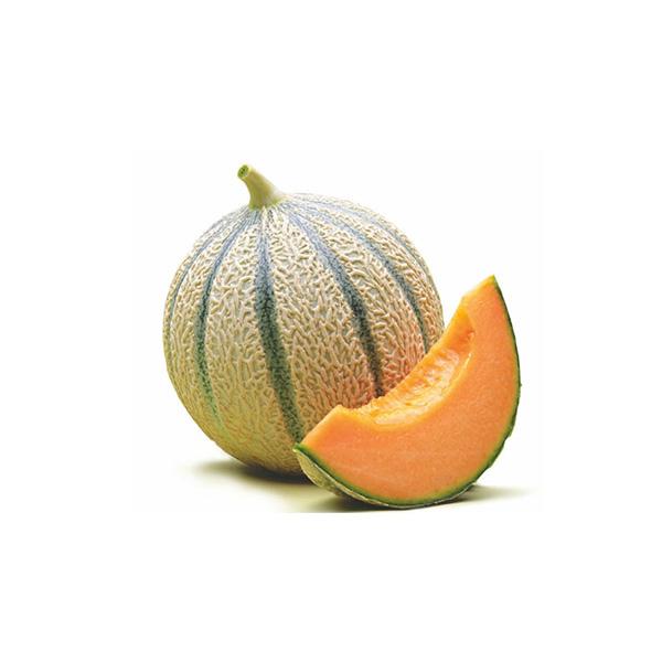 Melon Cantaloup ECO