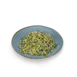 Rabanitos germinados 70g ECO