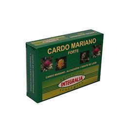 Cardo Mariano Eco 60 ECO