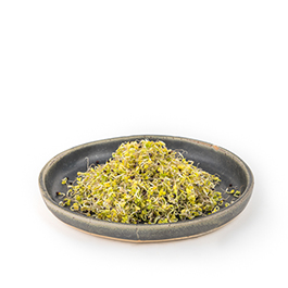 Brócoli germinado 70g ECO