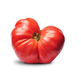 Tomate Feo ECO