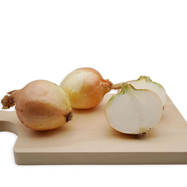 Cebolla Babosa ECO