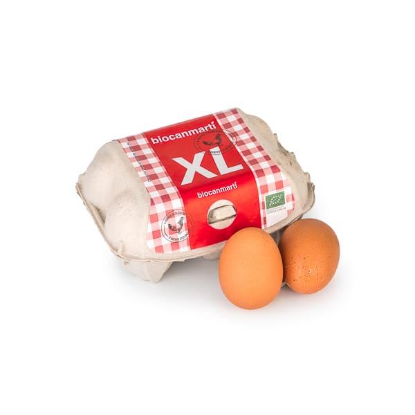 Huevos XL 6 unidades ECO
