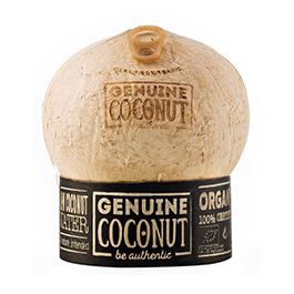 Agua de coco 450ml