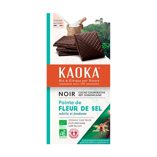 Chocolate con Sal 100g ECO