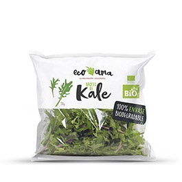 Brotes Kale 50g ECO