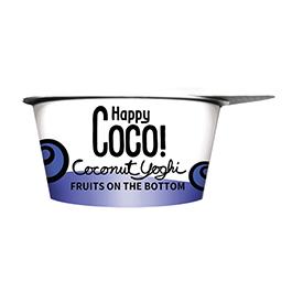 Postre Coco de arándanos 125g ECO